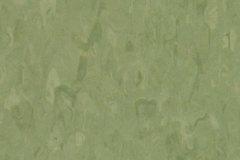 Grass 0760