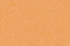Orange 0019