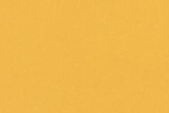 Yellow 036