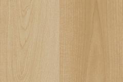 Modern Maple Maple