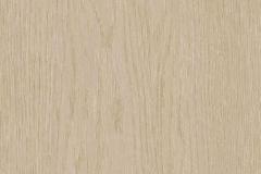 Oak Tree Beige