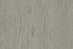Oak Tree Grey