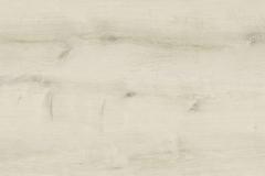 Zen Oak
