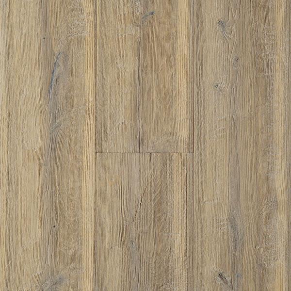 Oak Sonora