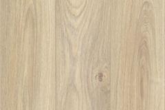 Canyon Light Oak