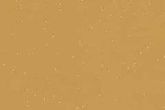 Snow Mustard