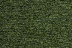 20201 Guyana Moss