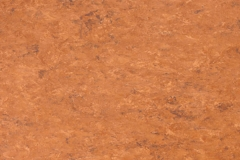 Rust 739